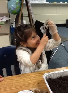 Campbell VPI student uses a microscope to explore a worm.