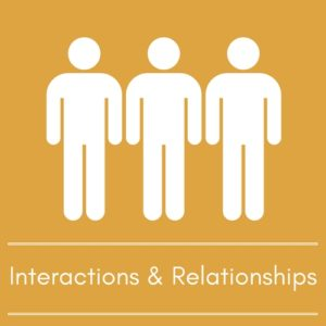 Interactions and Relationships