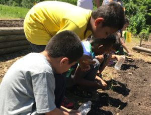 Randolph students planting seeds