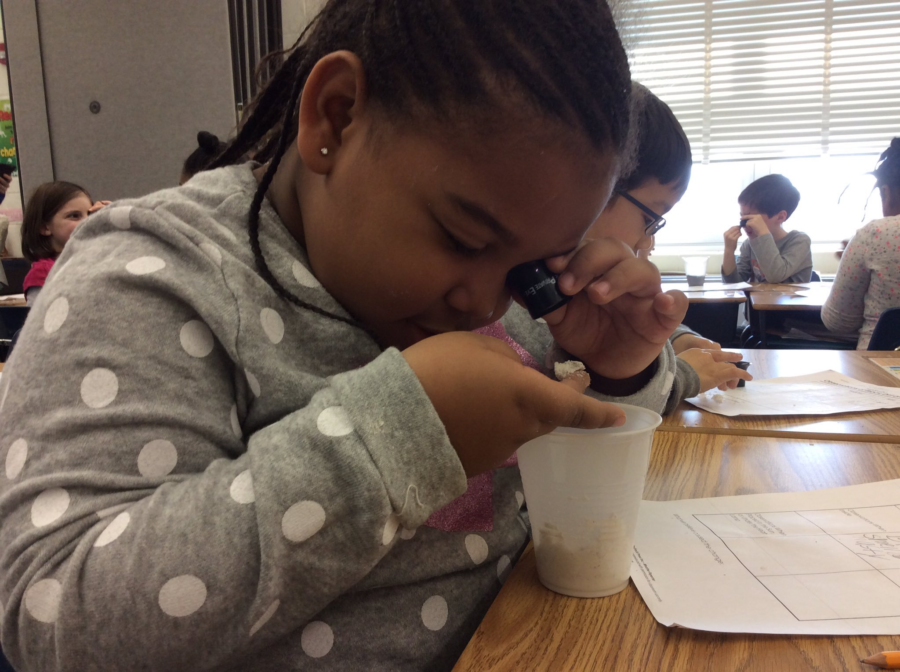 Using a Loop to investigate Germs