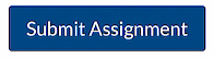 Canvas submit assignment button