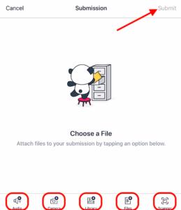Canvas App Media Aufnahmefenster