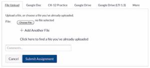 Canvas browser file upload details