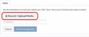 Canvas browser record media button