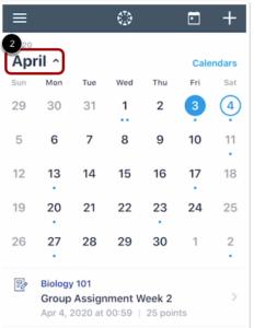 Canvas vue du mois du calendrier