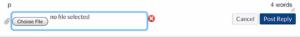 """Canvas Wählen Sie in einer Browser-Diskussion die Schaltfläche """"Datei"""""""