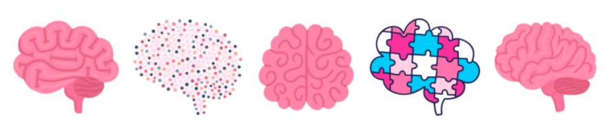 Image de cerveaux animés